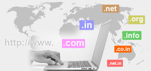 Visual result about domain registration